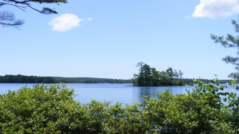 lake scene 3